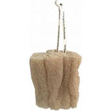 Loofah Naturel 15 cm Cordelette Compagnie du bicarbonat®