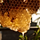 Thumbnail: Beeswax + Aniseed 12 oz Apothecary