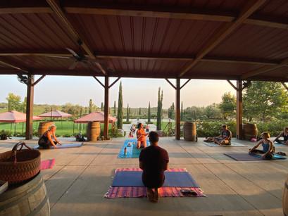 Yoga in the Vines Promo.jpeg