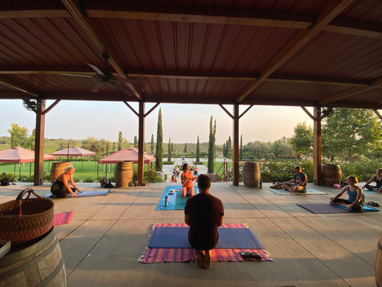 Yoga in the Vines with COIL Yoga