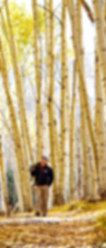 Jeff Johnson walking to work through anAspen grove in south central Colorado