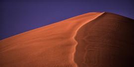 Ridge of the Dune