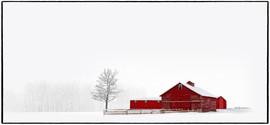 Winter's Isolation
