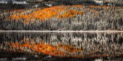 Lost Lake Reflections