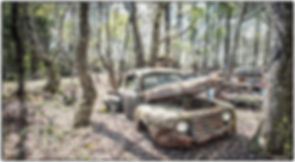 Cars in their final resting places at Old Car City, Usa in White, GA.