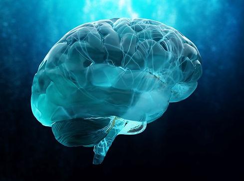 NeurAegis brain.jpg