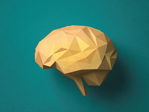 origami brain.jpg