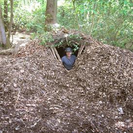 Leaf Shelter.jpg