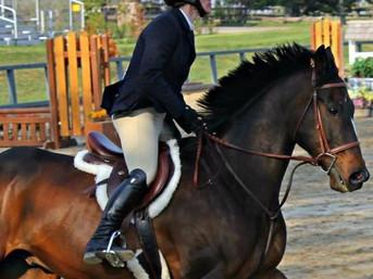 Michelle and Zanza - Eperon Equestrian