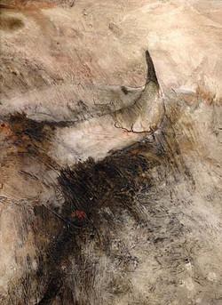 Detail: Luz y Sombra.