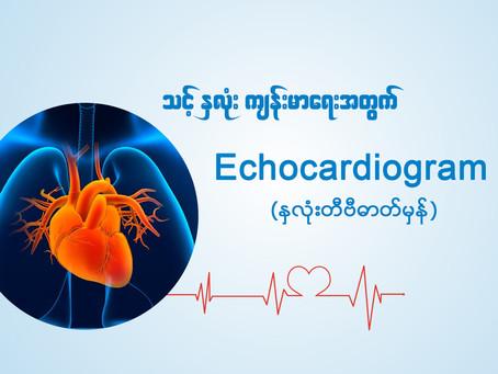 🥰 နှလုံးတီဗီဓာတ်မှန်ရိုက်ကူးခြင်း (Echocardiogram)