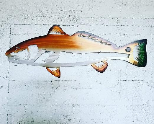 """Redfish 30"""" across"""