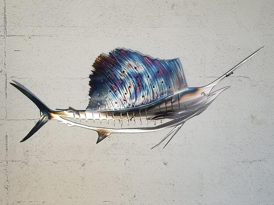 Sailfish 30in across