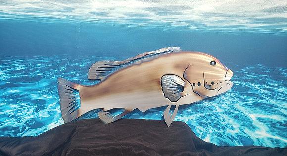 Tog Blackfish Tautog