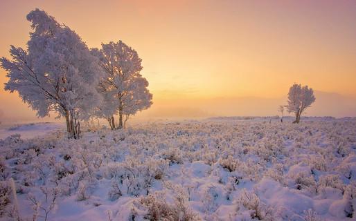 Winter on Rannoch Moor (3/6)