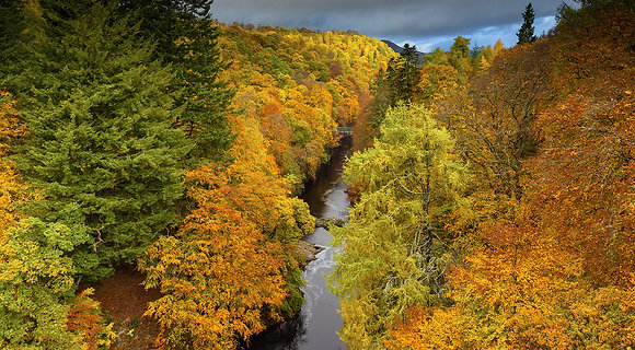 Autumn in Perthshire