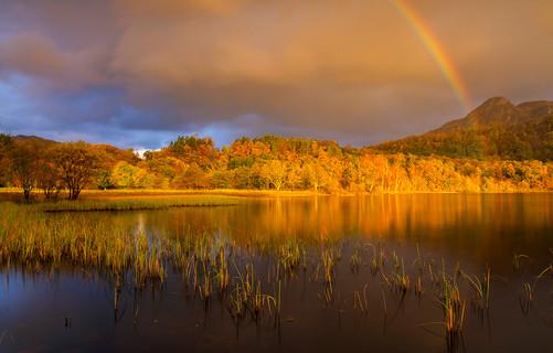 Trossachs autumn colour