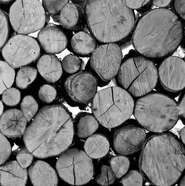 Wood pile (3/5)