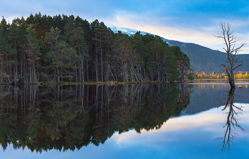 Cairngorms Reflection 2