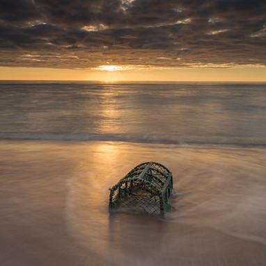 Lobster creel north coast (3/5)