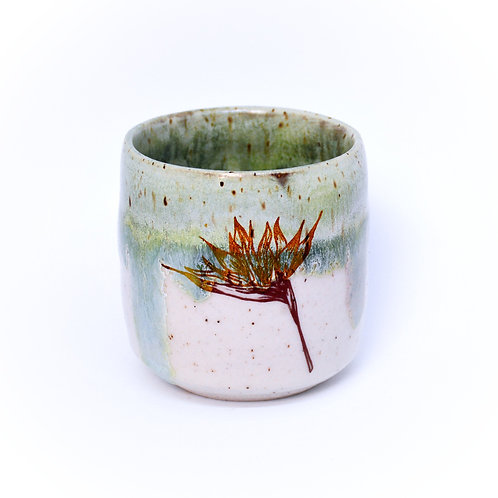Bird of paradise flowers cup