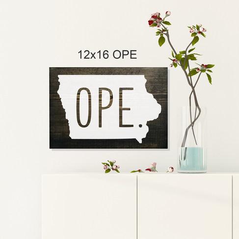 12x16 Ope