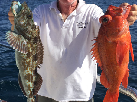 Captain Skip with a couple of many fish caught aboard The Duchess
