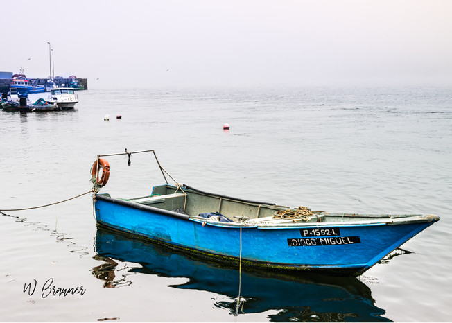 Fishing Boat, Afurada, Portugal