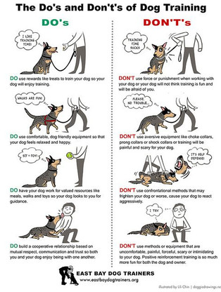 Do's & Dont's of Dog Training