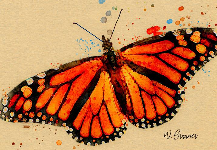 Resting Monarch Butterfly