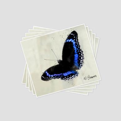 Butterflies II