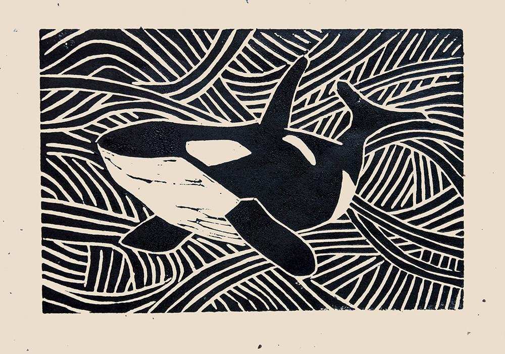 Orca IV