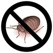 Get rid of Bed Bugs!