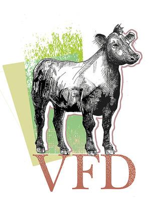 Cow VFD