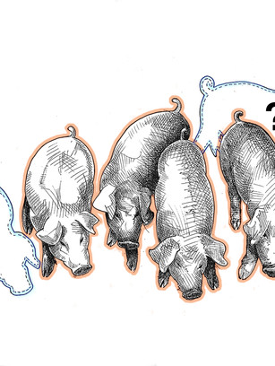 Pigs in Trouff