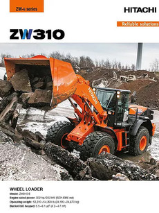 ZW310