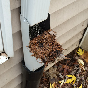 Gutter Installation, Gutter Replacement, Portland, Portland Gutters and Gutter Guards, Gutter Installation Services, gutter downspout solution, gutter downspout drainage, underground gutter drainage, gutter downspout extension, downspout drainage options, downspout drainage ideas, gutter downspout diverter, downspout extension ideas, pop up gutter drain, gutter and roof solutions nw reviews, gutter and roof solutions nw Vancouver wa, gutter solutions nw vancouver wa gutter solutions nw reviews, gutters,gutter solutions Portland, gutter replacement portland gutter and roofing solutions, nw gutters Hillsboro, nw gutters Sherwood, gutter installation Portland, seamless gutters Portland, portland residential gutters, gutters Beaverton, great northwest gutters, sherwood or gutter cleaning, nw gutters Hillsboro, nw gutters sherwood gutter installation Portland, seamless gutters Portland, portland residential gutters, gutters Beaverton, gutter cleaning