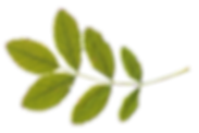 Life coach in Eugene, christian life coach, couples coaching, couples life coach, marriage coaching, marriage counselor, christian marriage counselor, best life coach Eugene, quality life coach, find life coach, outdoor life coach, relationship life coach, relationship coaching, personal coach, christian marriage coach, love life coach, book life coach, online life coach, remote life coach, relationshipcoachonline, life coachnear me, relationshipcoachwebsite, relationshipcoachingtools, certified relationship specialist, therapist life coach, christian life coach