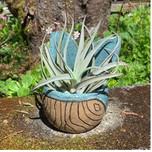 Janicek Pottery