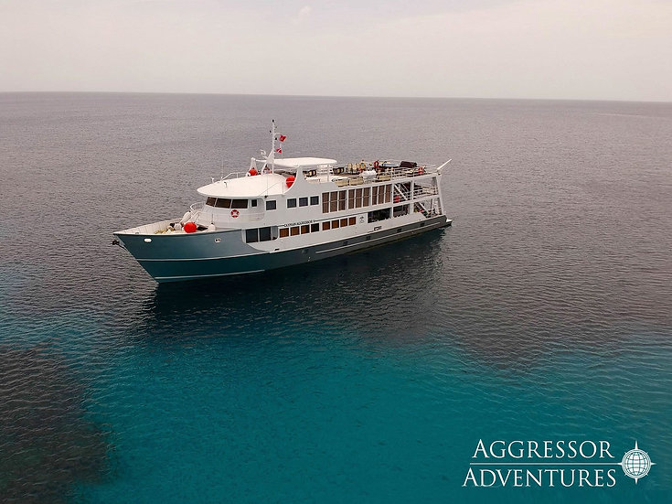 Cayman Aggressor