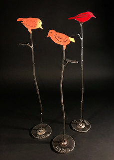 Songbird on Willow Branch.jpg