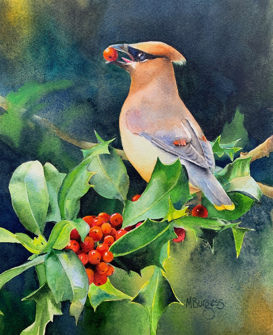 A Waxwing's Holiday