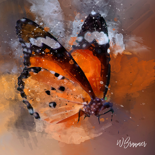 Winged Monarch Butterfly