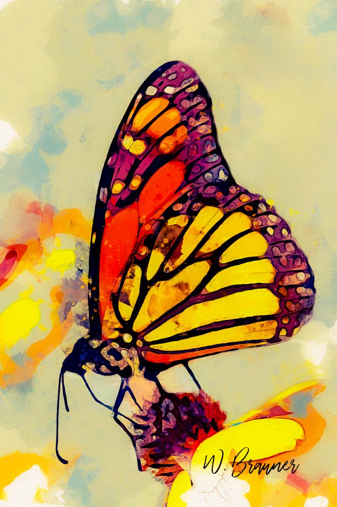 Monarch Butterfly-Watercolor