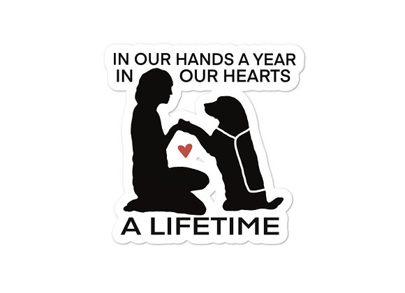 In Our Hands a Year Sticker