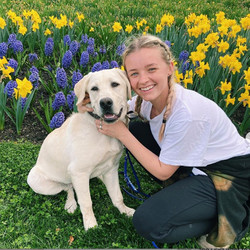 Caroline kneels in front of flowers with a yellow lab sitting next to her.