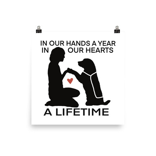Poster - In Our Hands a Year, In Our Hearts a Lifetime
