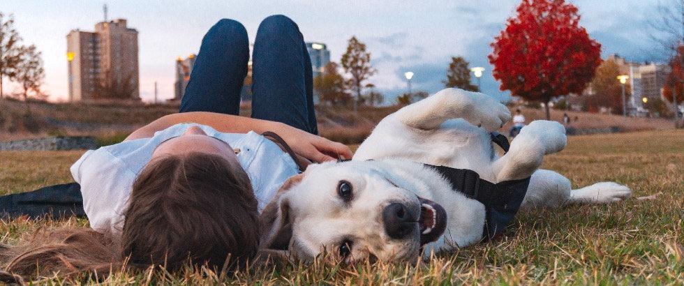 Choosing a Puppy Raising Organization