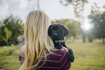 A blonde puppy raiser has her back to the camera and a black lab puppy peaking over her shoulder.