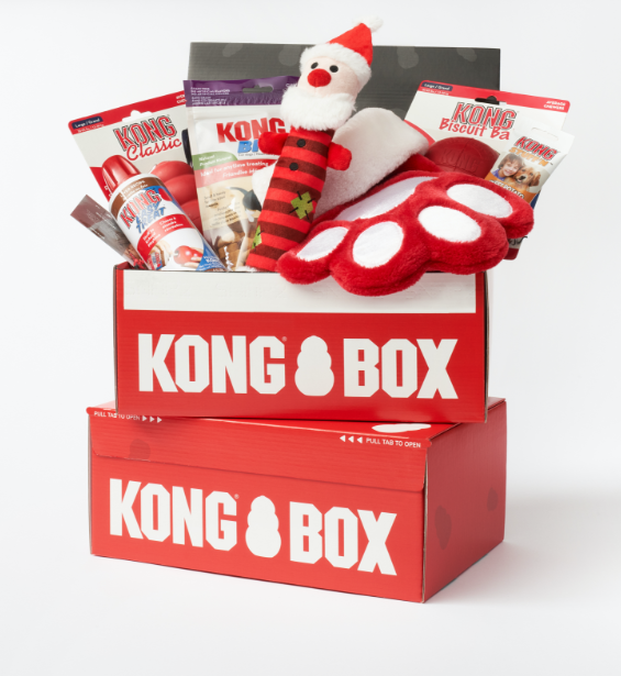 Two red kong boxes sit on top of each other. One has treats and Christmas themed toys.